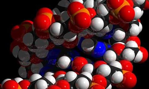 Biological Nanobots